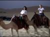 Abu Dhabi desert0280