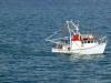 Trawler on Moreton Bay