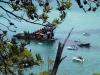 Wrecks through the Banksia