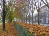 It is late Autumn and most of the leaves have fallen. It is quite a different way to see the city.