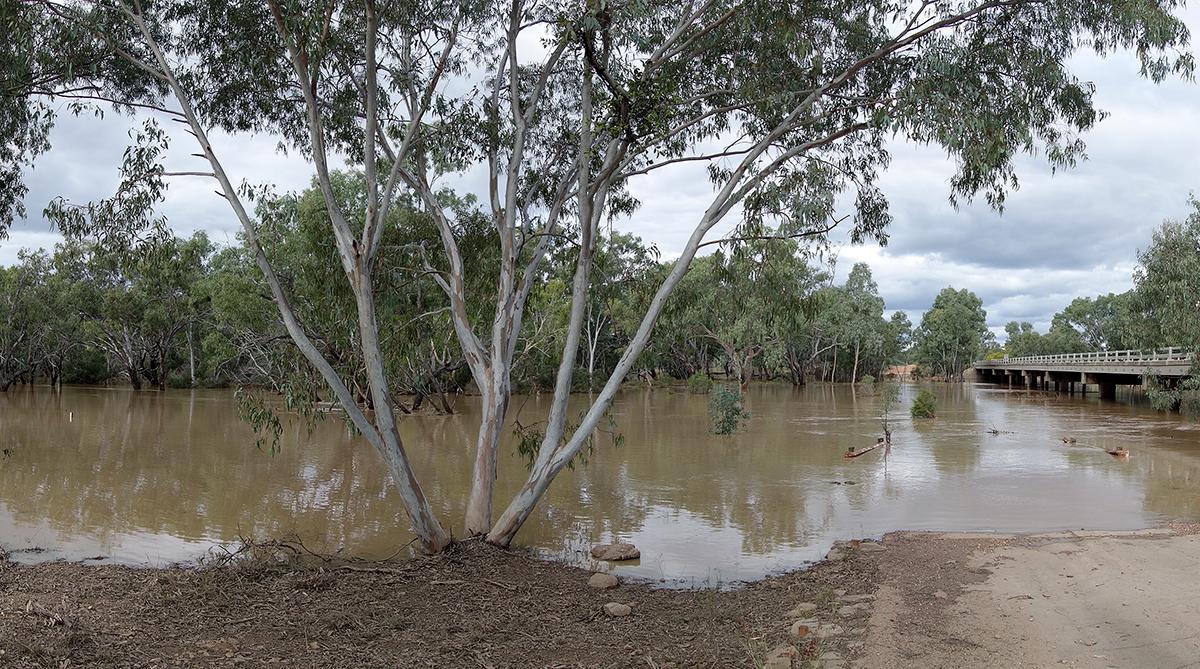 The Belyando River at Belyando Crossing